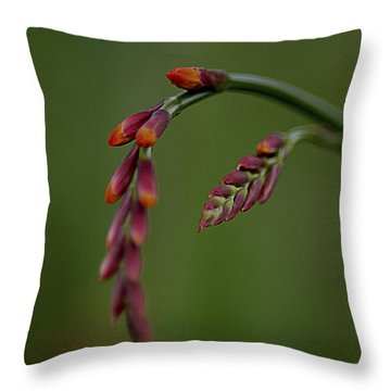Dangling Throw Pillow by Jacqui Boonstra