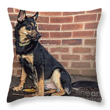 darcy. 8 Months Old Today #gsd Throw Pillow