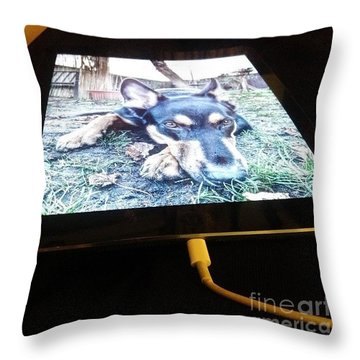 Darcy #germanshepherddog Throw Pillow
