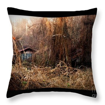 Dare To Enter Throw Pillow by Christy Ricafrente