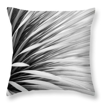 Dark And Light In Nature Throw Pillow