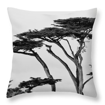 Dark Cypress Throw Pillow by Melinda Ledsome