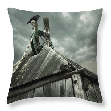 Dark Days Throw Pillow by Amy Weiss