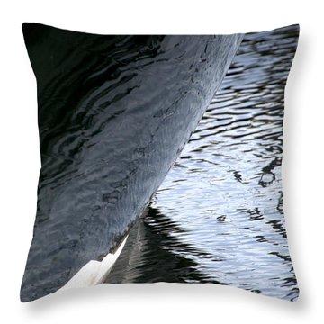 Dark Hull Throw Pillow