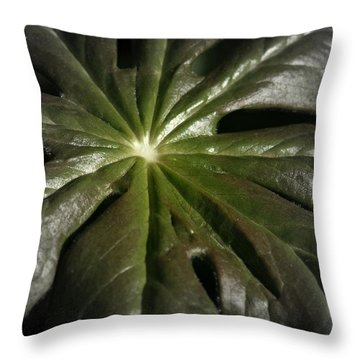 Throw Pillow featuring the photograph Dark Leaf by Henry Kowalski