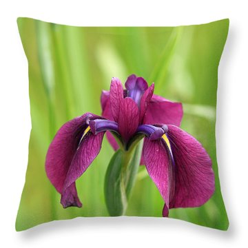 Dark Magenta Iris Throw Pillow