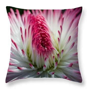 Dark Pink And White Spiky Petals Throw Pillow