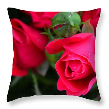 Dark Pink Roses #1 Throw Pillow