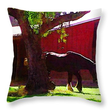 Dark Shire Throw Pillow by Timothy Bulone