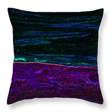 Dark Side Of The Moon By Jrr Throw Pillow by First Star Art