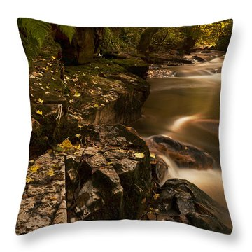 Darkness Becomes Light Throw Pillow