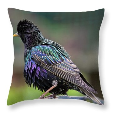 Darling Starling Throw Pillow