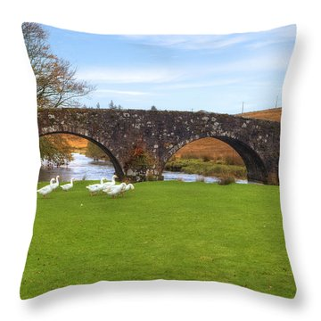 Dartmoor - Two Bridges Throw Pillow by Joana Kruse