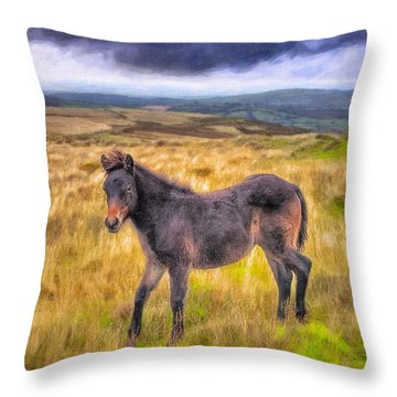 Dartmoor Pony On The Moors Throw Pillow
