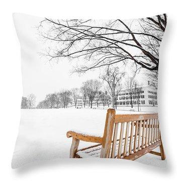 Dartmouth Winter Wonderland Throw Pillow