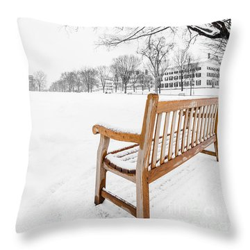 Dartmouth Winter Wonderland Throw Pillow