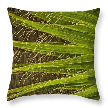 Date Palm Throw Pillow