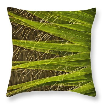 Date Palm Throw Pillow