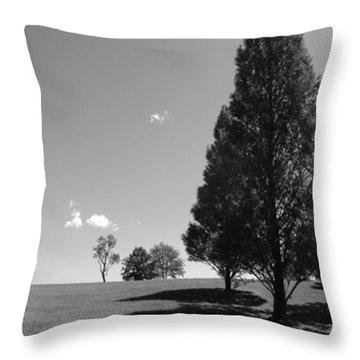 Davenport Park Throw Pillow