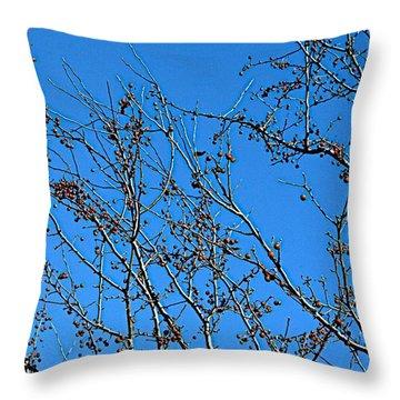 Dave's Blue Sky Throw Pillow by Joseph Yarbrough