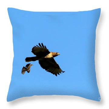 David And Goliath Throw Pillow by Mike  Dawson