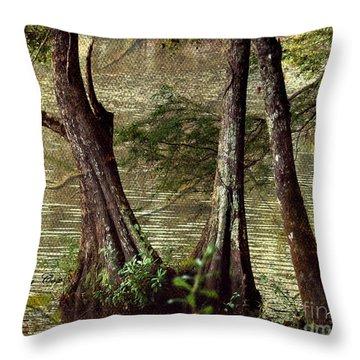 Davids River Throw Pillow