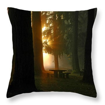 Throw Pillow featuring the photograph Dawn At Mckercher Park by Nick  Boren