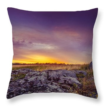 Dawn At Steppe Throw Pillow