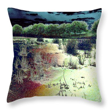 Throw Pillow featuring the photograph Dawn Breaking On South Florida Marshland by Merton Allen