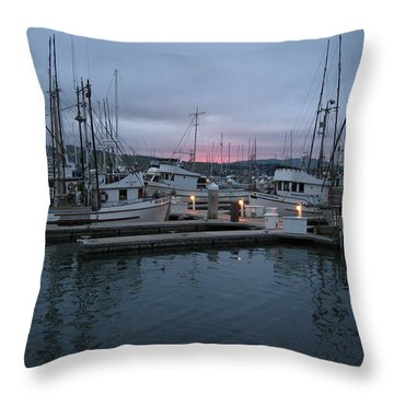 Throw Pillow featuring the drawing Dawn by Dianne Levy