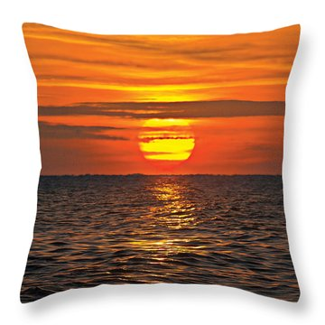 Dawn Flight Throw Pillow by David Davies