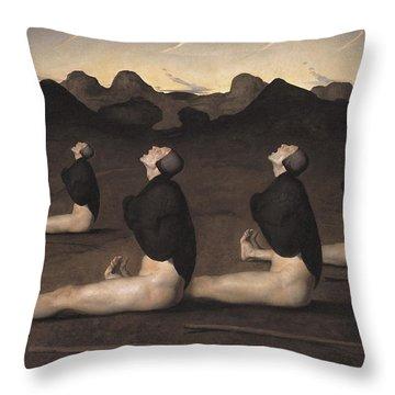 Baroque Throw Pillows