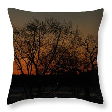 Dawns Early Light Throw Pillow by Joe Faherty