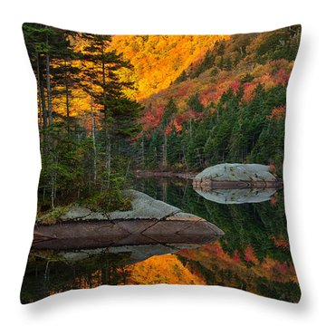 Dawns Foliage Reflection Throw Pillow