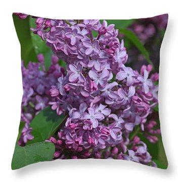 Dawns Lilacs Throw Pillow