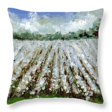 Delta Cotton Field Throw Pillow