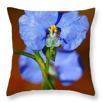 Throw Pillow featuring the photograph Day Flower In The Morning Dew by Myrna Bradshaw