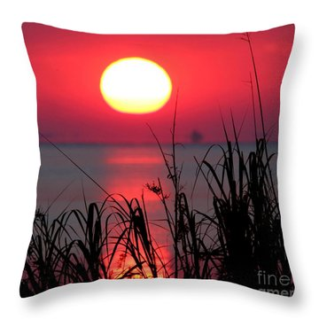 Day Is Done Throw Pillow by Marty Fancy