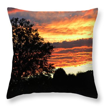 Day Is Done Throw Pillow by Luther   Fine Art