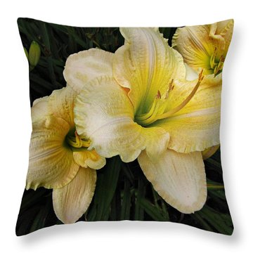 Day Lilies A Short Life Throw Pillow