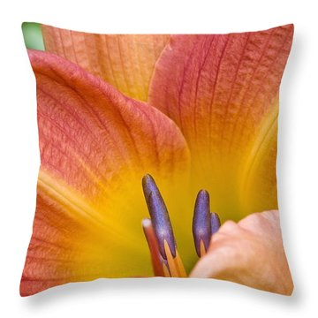 Day Lily  3 Throw Pillow
