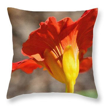 Day Time Throw Pillow by Larry Bishop