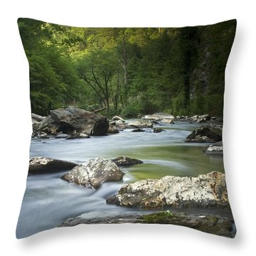 Daybreak In The Valley Throw Pillow