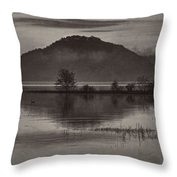 Daybreak On The Mississippi Throw Pillow