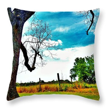 Throw Pillow featuring the photograph Daydreamer by Faith Williams