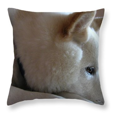 Daydreamer Throw Pillow by Stuart Turnbull
