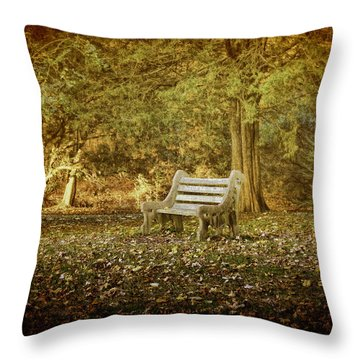 Throw Pillow featuring the photograph Daydreamer's Bench by Ola Allen