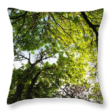 Daydreaming In The Hammock Throw Pillow