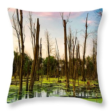 Daylight In The Swamp Throw Pillow