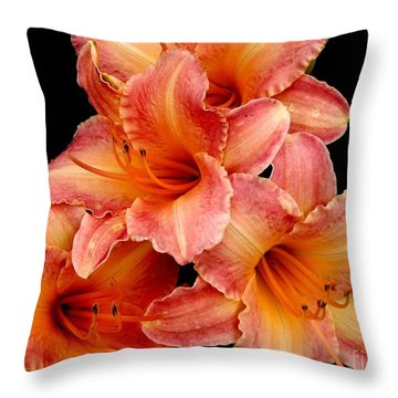 Throw Pillow featuring the photograph Daylilies 2 by Rose Santuci-Sofranko